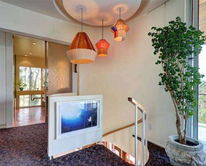 They have a picture of a shark at the top of their stairs.