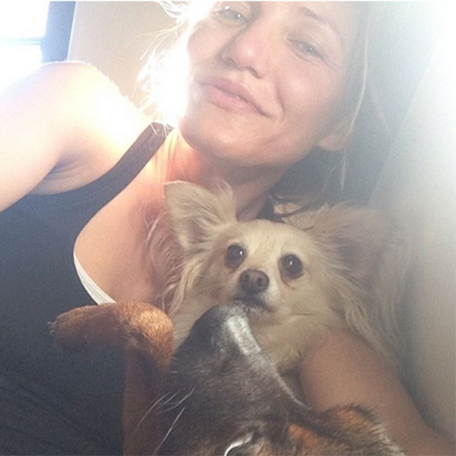 "Cameron Diaz has said she used to have ""deep, boiling pimples"" as a teenager, but after overhauling her unhealthy diet, the acne went away. Here she looks as beautiful as her pooch looks stunned."