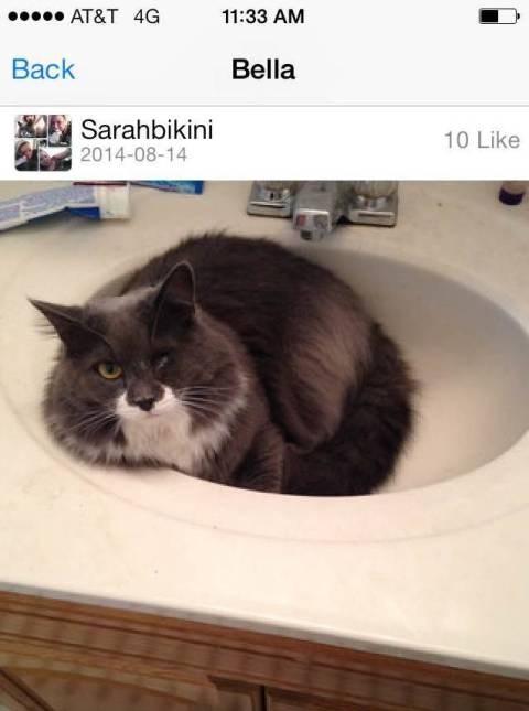 """Must hate baths."""