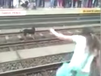 Watch this TENSE video of a woman saving a dog on the train tracks