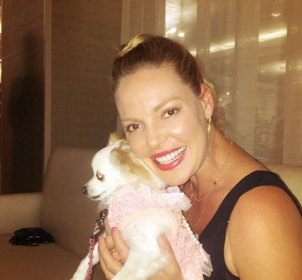 Katherine Heigl never strays far from her natural sandy hair, but now she's basically a Kardashian.