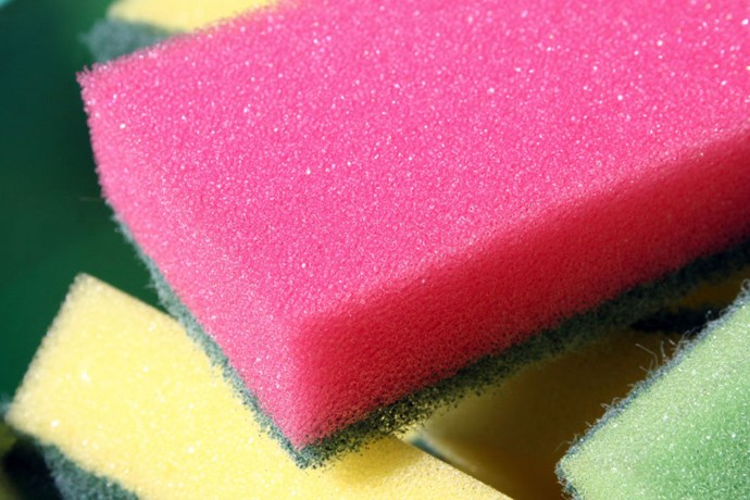 **4. Scourers: 7 days** If you keep your sponges for too long, you'll be spreading more than detergent all over your dishes. Tests have found that there can be up to 10 million bacteria living in a square inch of your kitchen sponge, including one called campylobacter which comes from poultry and can lead to paralysis.