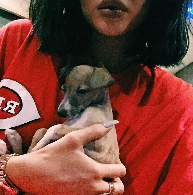 21. We're feeling these fingers. And that puppy.