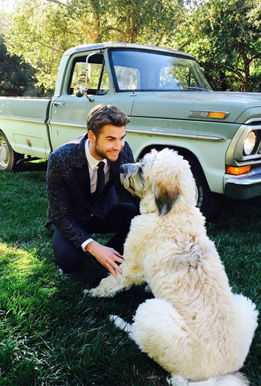 We wonder if Liam would adopt us if we were dogs? #GenuineQuestion.