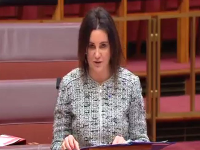 Jacqui Lambie calls Cory Bernardi an 'angry prostitute' in parliament, then apologises to sex workers
