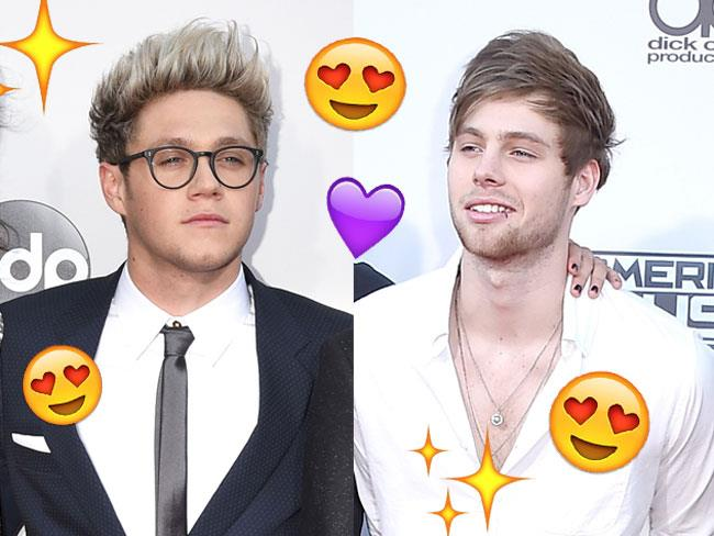 Luke Hemmings and Niall Horan just reunited their ...