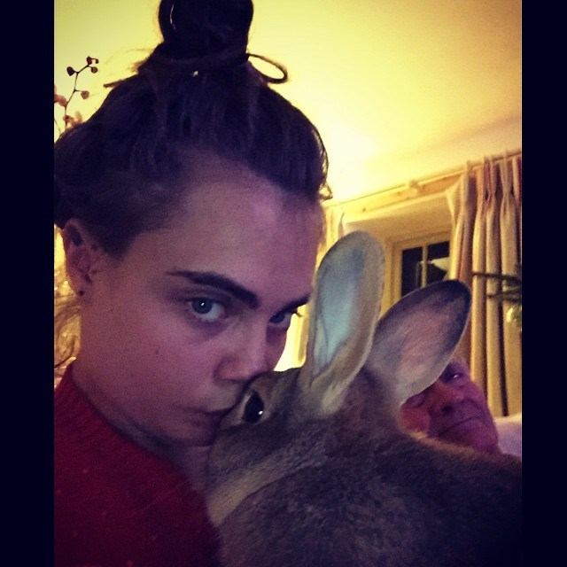 """<strong>Cara Delevingne</strong><br> After a huge year of modelling and acting, Cara Delevingne took some much needed time out with her family. In between some very cute snaps of the little Delevingnes dressed in Santa outfits, Cara snuggled up with her adorable bunny <a href=""""http://www.elle.com.au/news/fashion-news/2014/7/behind-the-scenes-cara-delevingne-and-bunny-cecil-for-topshop/"""">Cecil</a>. <br><br> Instagram: @caradelevingne"""