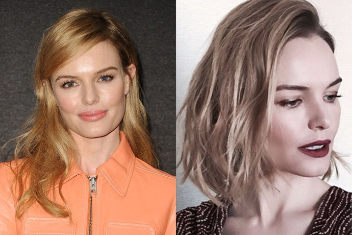 KATE BOSWORTH<br> The beautiful blonde has joined the bob club, and of course she looks gorgeous. According to her Instagram, she made the chop for her upcoming role in 90 Minutes in Heaven.