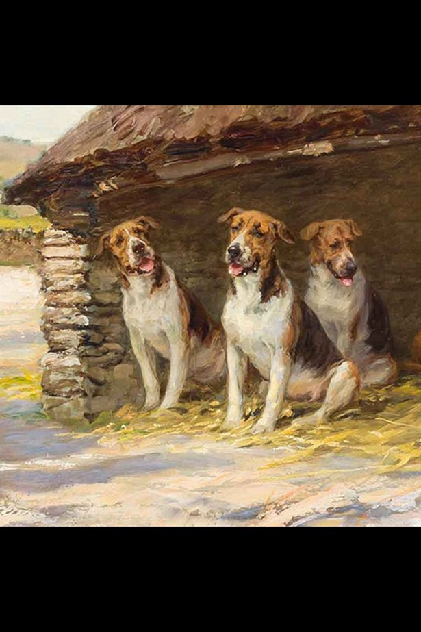 'Dogs in Show' by Maude Earl.