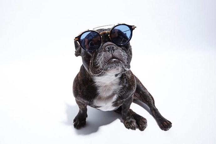 """Which way to the VIP entrance?"" <br> @_naughtybyninja wears; Sunglasses, $925, Thom Browne, thombrowneeyewear.com"