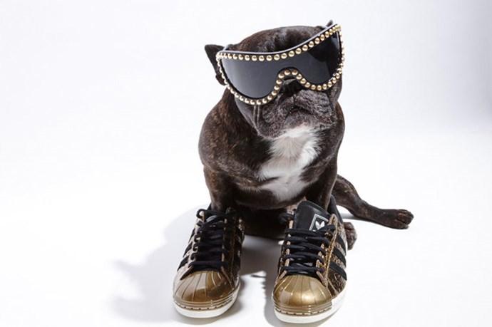 """My standard Saturday night get-up"" <br> @_naughtybyninja wears; Sunglasses, $1430, Chanel, 1300242635; Sneakers, $170, Adidas Originals, <a href=""http://www.adidas.com.au/superstar-80s-metal-toe-shoes/B25033.html "">adidas.com.au</a>"