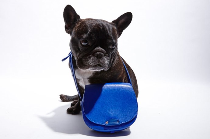 """""""How do you blue?"""" <br> @_naughtybyninja wears; Bag, $320, Repetto, <a href=""""http://www.repetto.com/en/saddle-bag-petit-telemaque-gipsy-blue-soprano-leather-m0302sop-608.html"""">repetto.com</a>"""