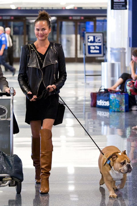 <strong>CHRISSY TEIGEN</strong> <BR> We can't decide which we want more: this model's over-the-knee boots or her adorable bulldog.