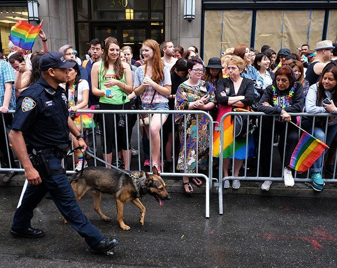 New York cop gets down at Pride Parade