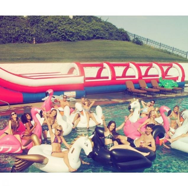 """""""Swan squad."""" - <strong>@taylorswift</strong>"""