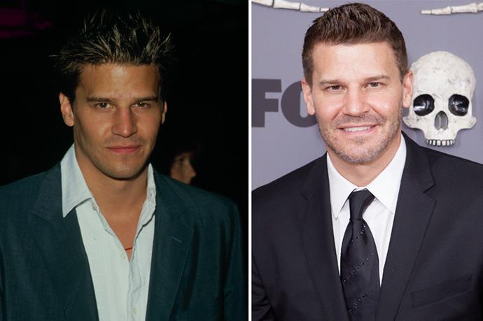 <strong>David Boreanaz</strong> ANGEL. Enough said. In recent times he's voiced himself on American Dad!