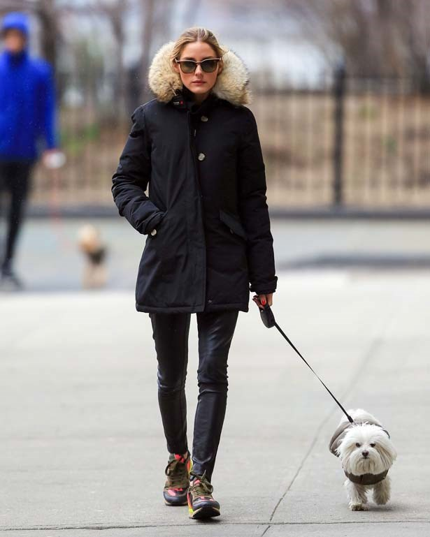<p>April 04, 2014</p> <p>Olivia Palermo walking her dog in New York City.</p>