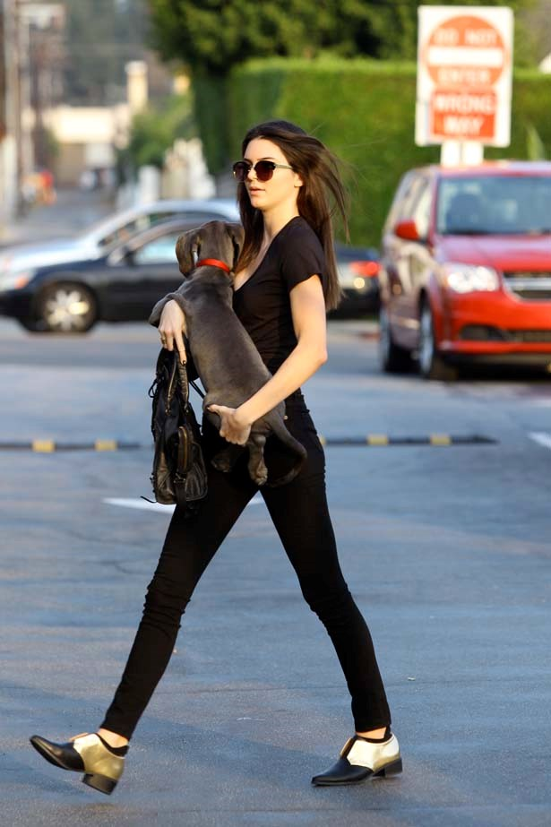 <p>October 23, 2013</p> <p>Kendall Jenner pictured with her dog in Los Angeles.</p>