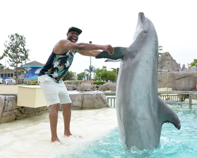 DWYANE WADE After getting a closer look at Dwyane's shirt, the dolphin slowly retreated back into the water. GETTY