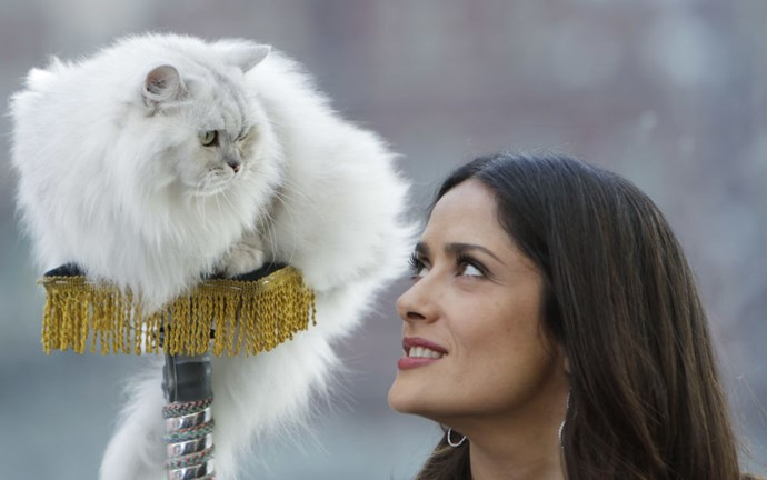 """SALMA HAYEK """"Why do you get the seat?"""" GETTY"""