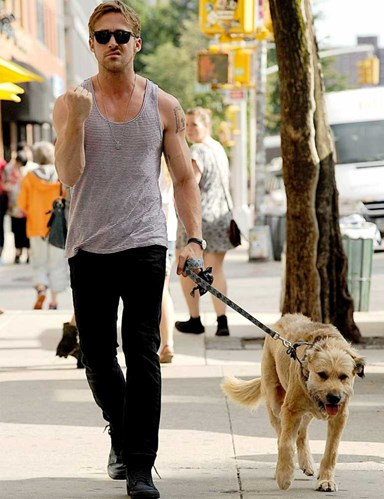Puppy Love: Celebrities And Their Dogs