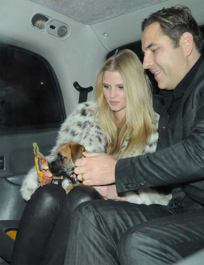 David Walliams and Lara Stone share a taxi with their dog Bert.