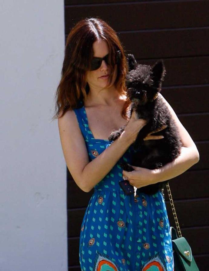 Rachel Bilson and her pooch.