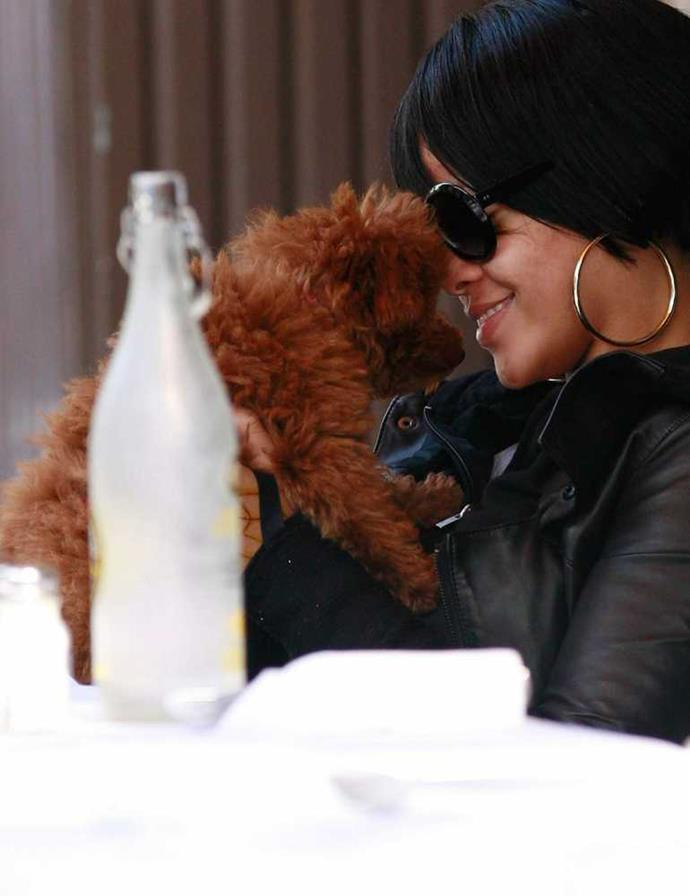 Rihanna and her maltipoo Oliver.