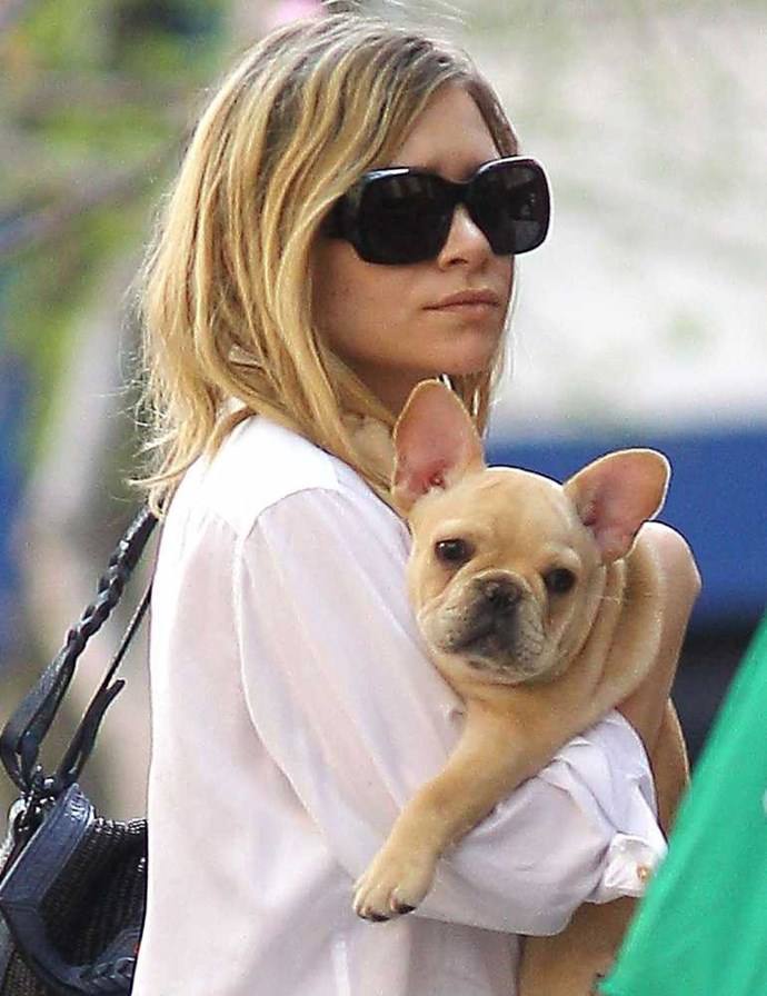 Ashley Olsen and her French bulldog.