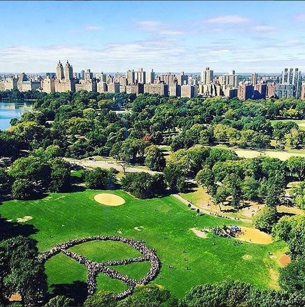 <em><strong>ALEXA CHUNG</strong></em> <p> Nowadays, Alexa is all about clean, sharp shots - like this one of some, like... giant people-made peace sign in Central Park.