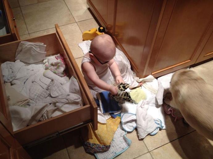 "Anna tweeted: ""I was going to find someone to help me organize but turns out my baby and dog are great at it!"" <br> <br> Image: <a href=""https://twitter.com/AnnaKFaris/status/425483223036993536/photo/1"">Twitter</a>"