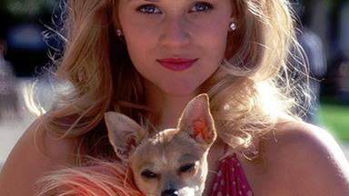Reese Witherspoon's Plot For Legally Blonde 3 Is Perfect