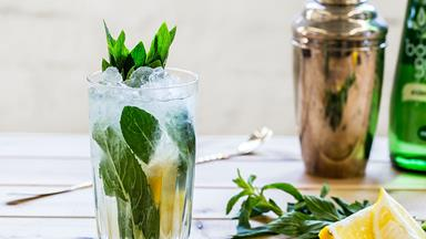 ELLE Tipple: Gin And Elderflower Cocktail Recipe