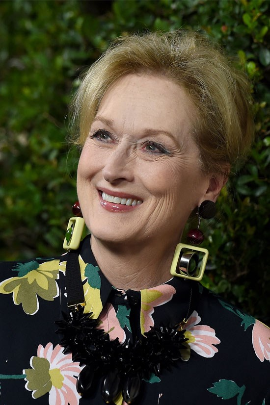 """<strong>Meryl Streep</strong> <br><br> Meryl Streep – possibly the most legendary person to walk this earth – <a href=""""http://www.elle.com.au/news/celebrity-news/2015/6/meryl-streep-wants-to-bring-back-the-equal-rights-amendment/"""">wrote a letter to the United States Congress</a> asking them to revive the Equal Rights Amendment. The amendment was introduced in 1923. By the 1980s, only 35 out of the 38 states needed to make the amendment constitutional had ratified it."""