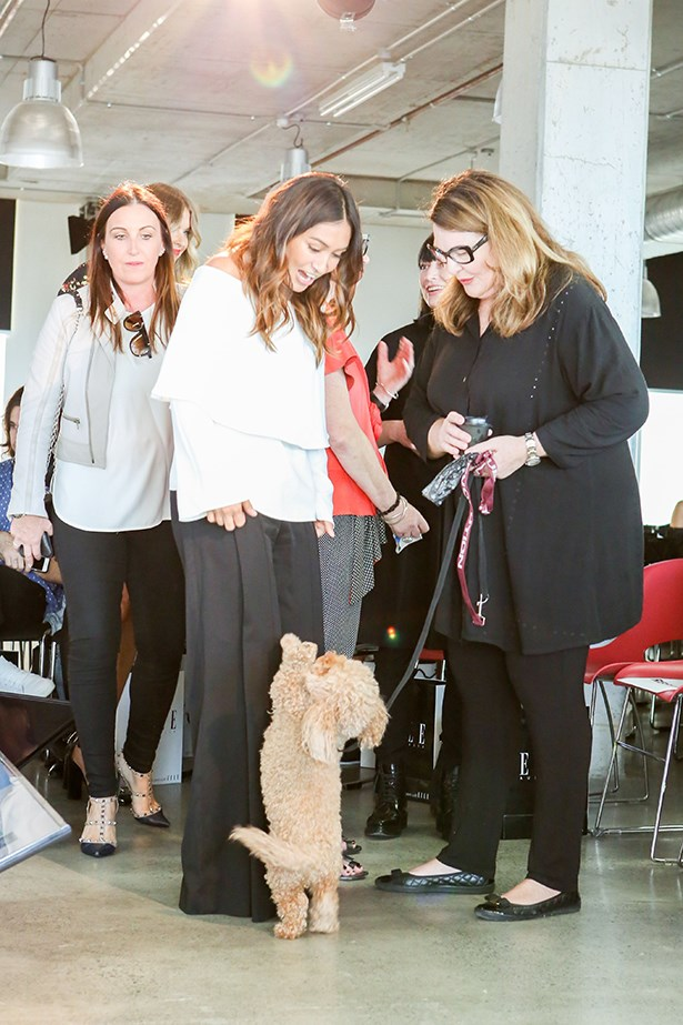 Our editor-in-chief Justine Cullen meets a furry friend.