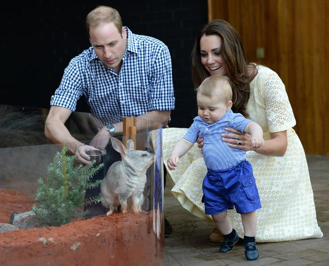 When he met the wallaby that was named after him.