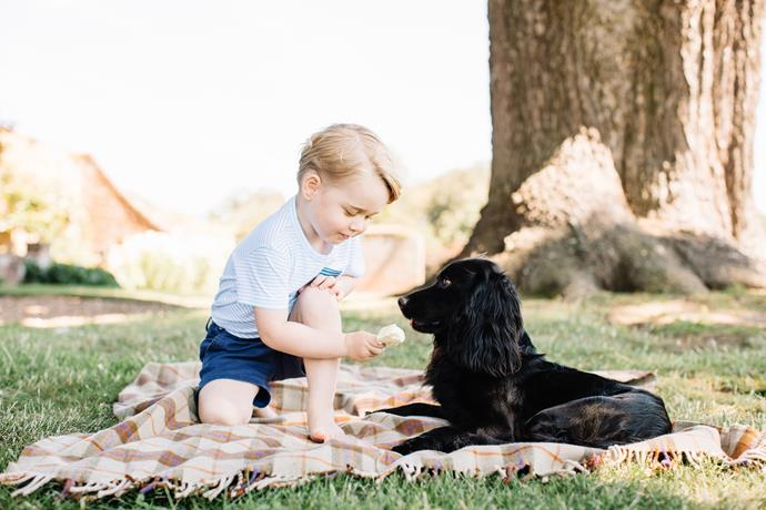 When he shared his ice cream with his confusingly beautiful dog, Lupo.