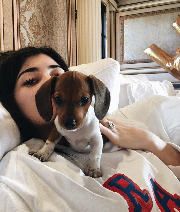 Kylie Jenner's new puppy, Penny - a birthday gift from friend Jordyn Woods.