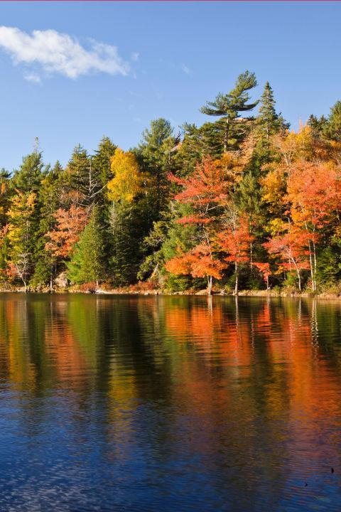 <strong>Eagle Lake, Maine</strong><br> A Great Alternative To . . . Hawaii<br> Instead of going to Hawaii, take the long-haul flight out of the equation and go on a road trip to Eagle Lake in Acadia National Park. Trust us, you won't miss the tropical beach when you're surrounded by gorgeous fall foliage and soothing mountain air.