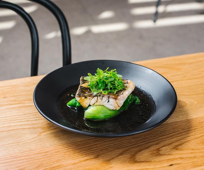 Lotus Barangaroo Steamed Fish With Ginger And Shallots Recipe