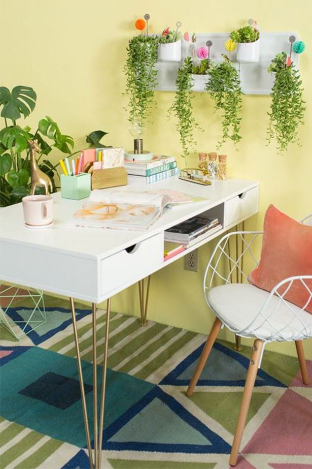 """<a href=""""https://au.pinterest.com/pin/424605071105031719/"""">How to style indoor vines.</a>"""
