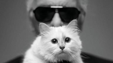 Devastating News For Karl Lagerfeld's Cat, Choupette