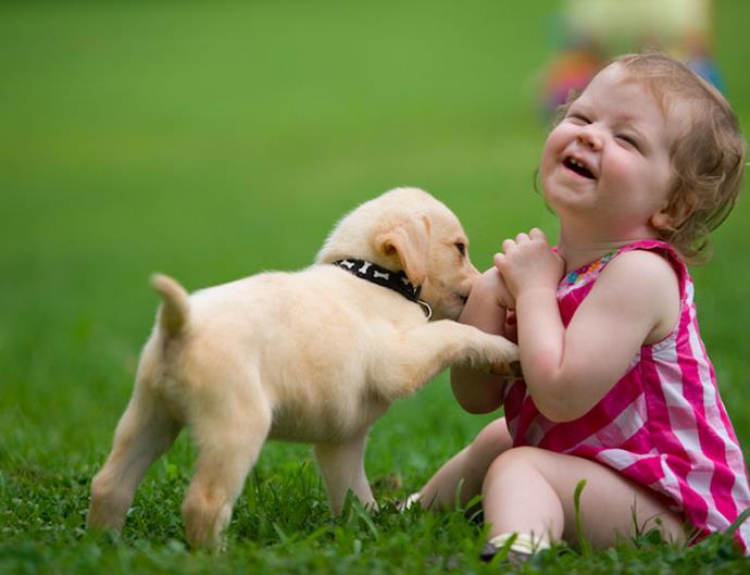 Baby dog healthier life