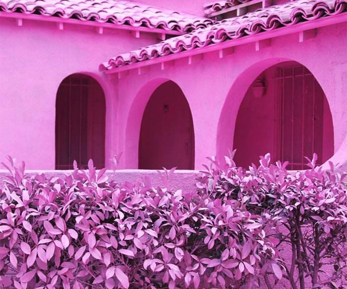 Pink Houses LA