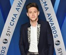 Niall Horan Has Just Signed A Modelling Contract