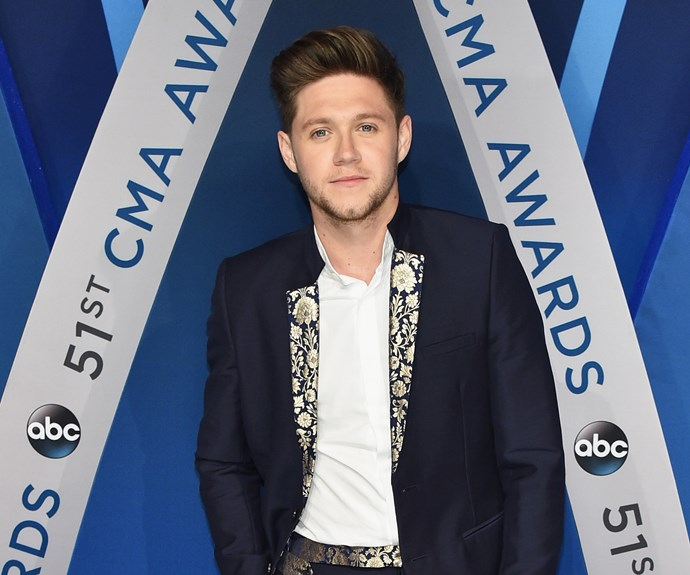 Niall Horan Model