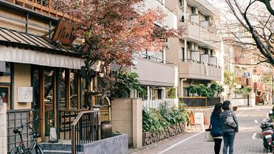 The Cool Girl's Practical Guide To Tokyo