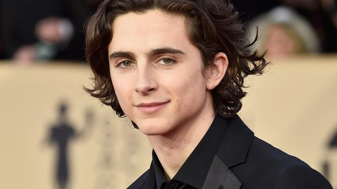 Timothee Chalamet at 2018 SAG Awards