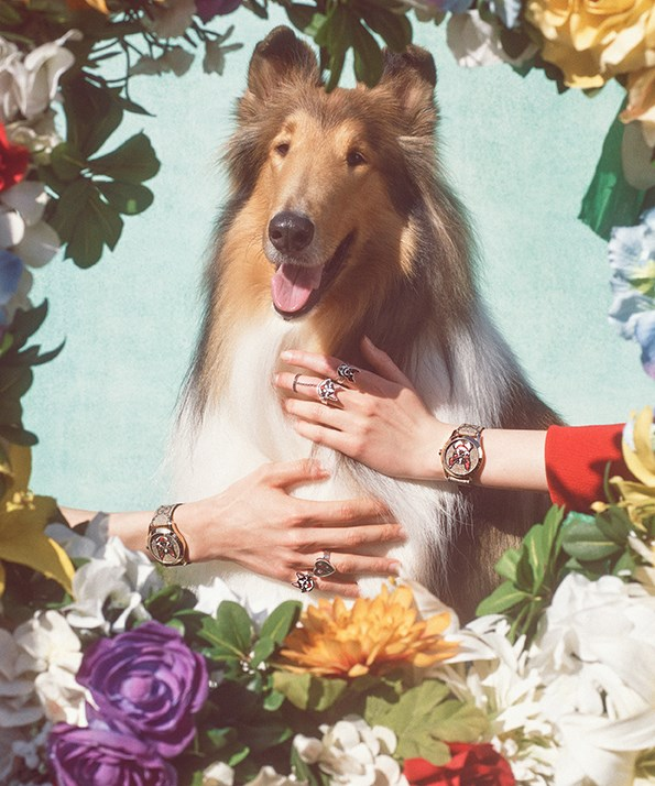Gucci's New Year of the Dog campaign