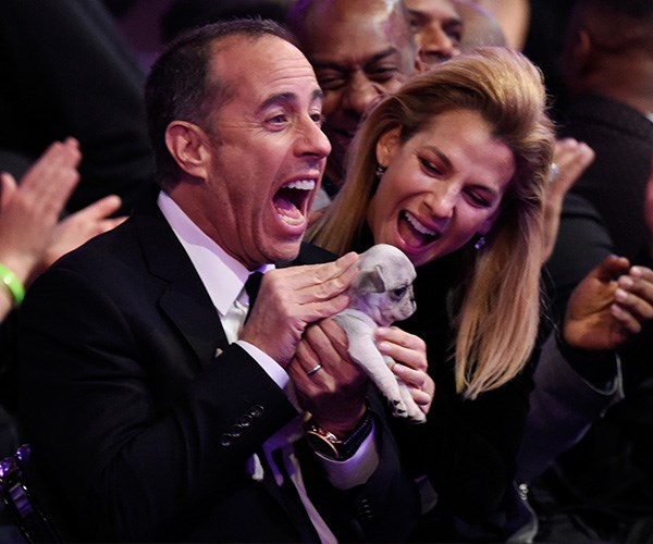 Grammys 2018 Consolation Puppies